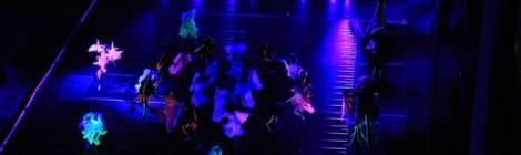 """Спектакъл """"Мистерията Еньовден"""", 2013"""